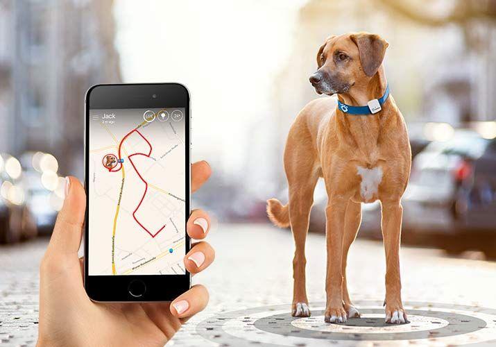 Tractive GPS Tracker pro psy a kočky Hunter´s edition